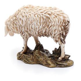 Pecora che bruca 15 cm resina Moranduzzo s3