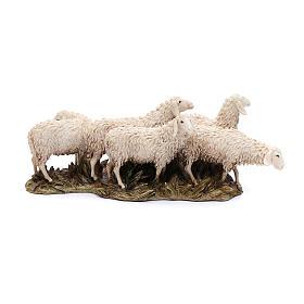 Gregge 6 pecore 15 cm resina Moranduzzo s1