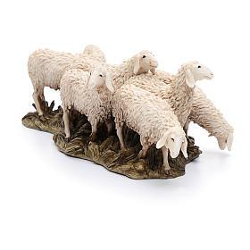 Gregge 6 pecore 15 cm resina Moranduzzo s2