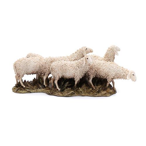 Gregge 6 pecore 15 cm resina Moranduzzo 1