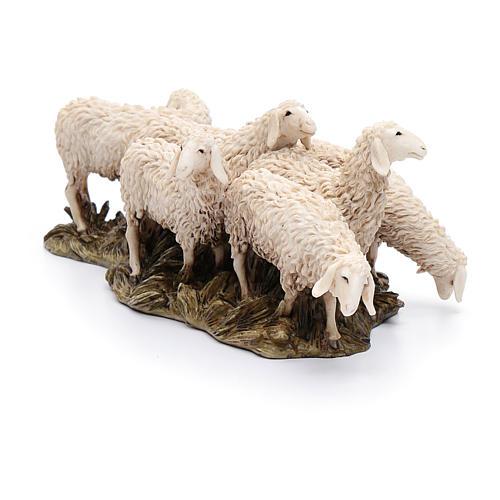 Gregge 6 pecore 15 cm resina Moranduzzo 2