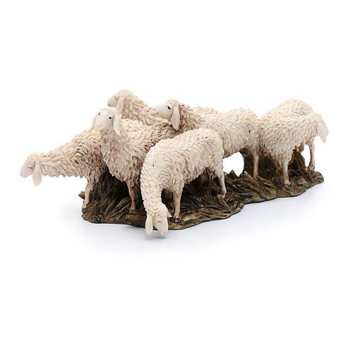 Gregge 6 pecore 15 cm resina Moranduzzo 3