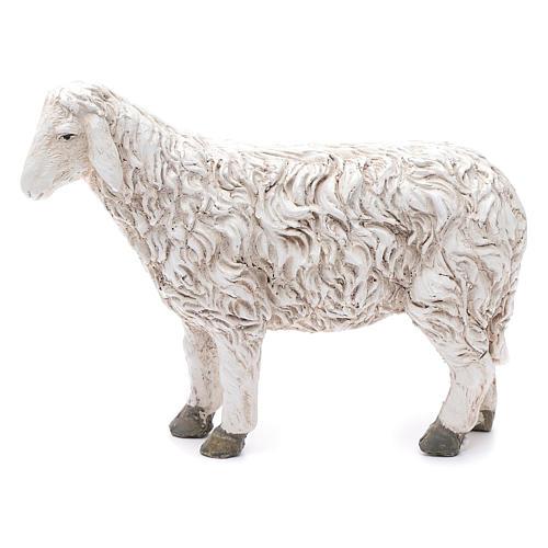 Statua pecora con testa alta Martino Landi per presepe 50 cm 1