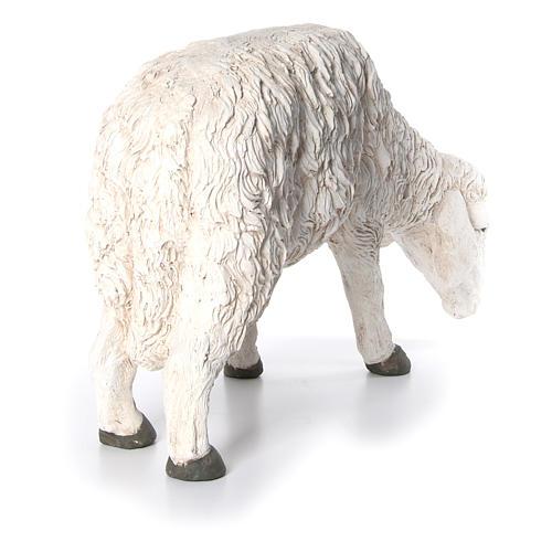 Statua pecora che bruca Martino Landi per presepe 120 cm 4