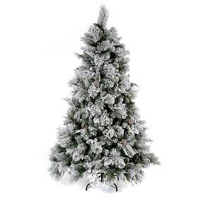 Albero di Natale 225 cm floccato pigne Bedford s1