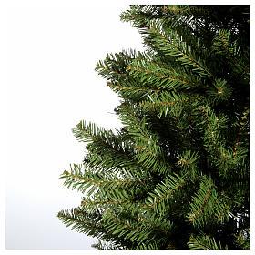 Albero di Natale 210 cm verde Dunhill Fir s4
