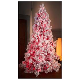 Albero di Natale 230 cm Red Velvet abete innevato 500 luci led uso interno s4