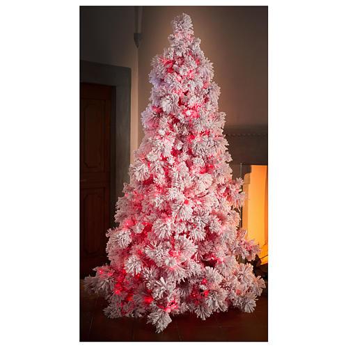Albero di Natale 230 cm Red Velvet abete innevato 500 luci led uso interno 4