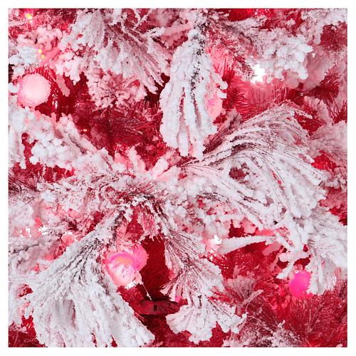 Albero di Natale 270 cm Red Velvet abete innevato 700 luci led interno 2