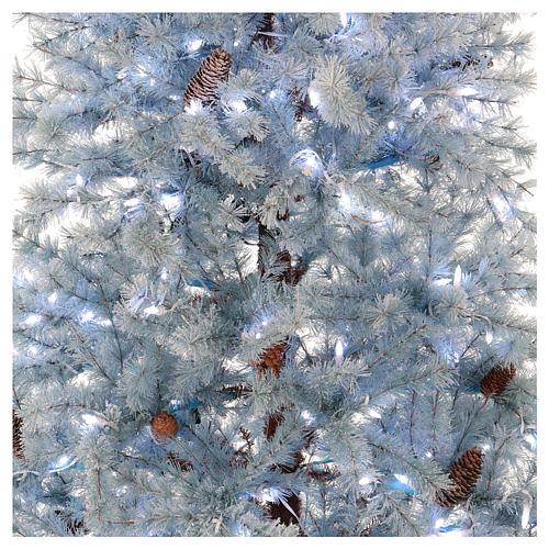 Albero di Natale 210 cm Victorian Blue brinato blu pigne naturali 350 eco led interno esterno 2