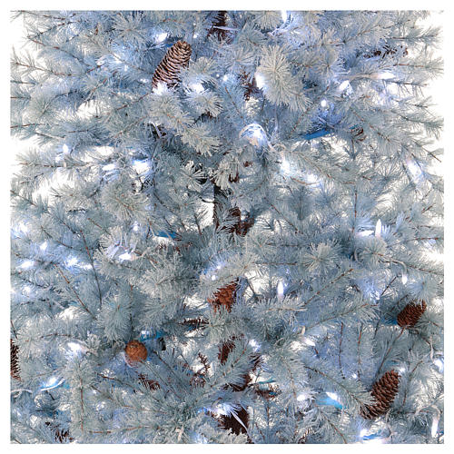 Christmas tree 210 cm in Victorian Blue with frosted blue pine cones 350 eco LED indoor outdoor  2