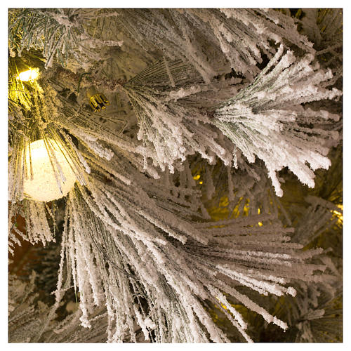 Albero Natale 200 cm pino innevato con pigne naturali 350 luci led interno feel real 4