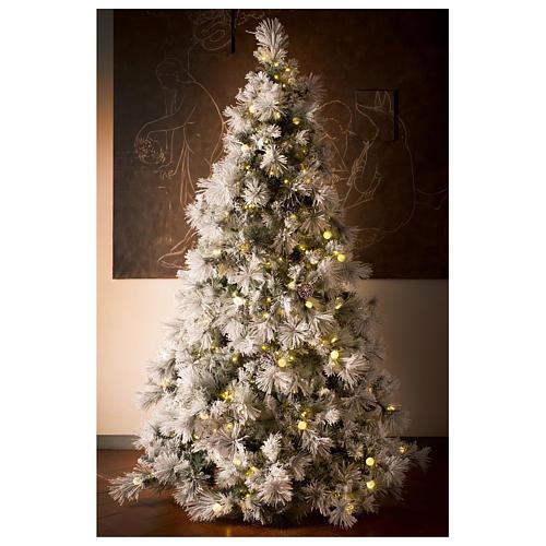 Albero Natale 200 cm pino innevato con pigne naturali 350 luci led interno feel real 5