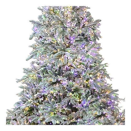 Árbol de Navidad 195 cm 2000 LED 3 colores Poly Andorra Frosted 2