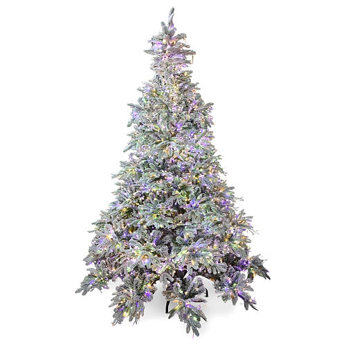 Weihnachtsbaum aus Poly mit 2400 LEDs Andorra Frosted, 210 cm 1