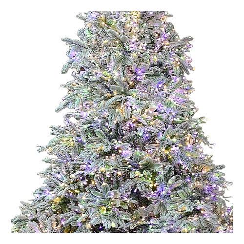 Albero di Natale 210 cm Poly 2400 LED 3 colori Andorra Frosted 2