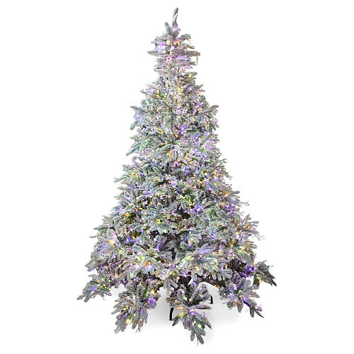 Artificial Christmas tree 210 cm Poly 2400 3 colored LEDs Andorra Frosted 1