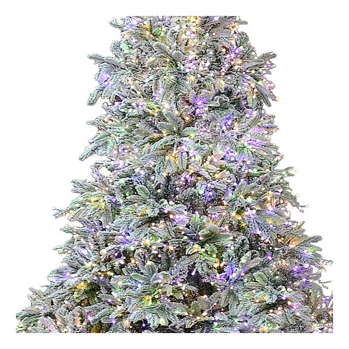 Artificial Christmas tree 210 cm Poly 2400 3 colored LEDs Andorra Frosted 2