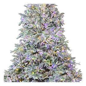Sapin de Noël 225 cm 2900 LED 3 couleurs Poly Andorra Frosted s2