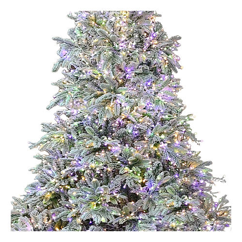 Sapin de Noël 225 cm 2900 LED 3 couleurs Poly Andorra Frosted 2