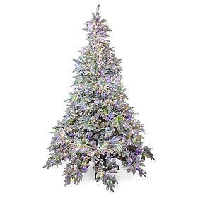 Albero di Natale 225 cm 2900 LED 3 colori Andorra Frosted Poly s1