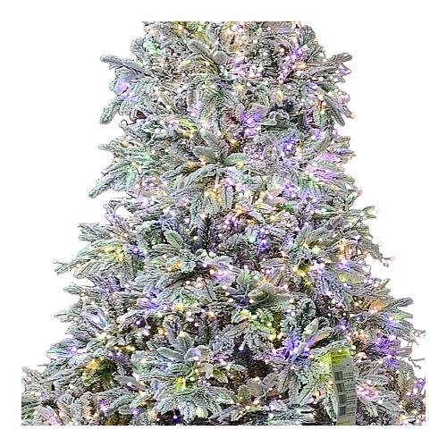 Albero di Natale 225 cm 2900 LED 3 colori Andorra Frosted Poly 2