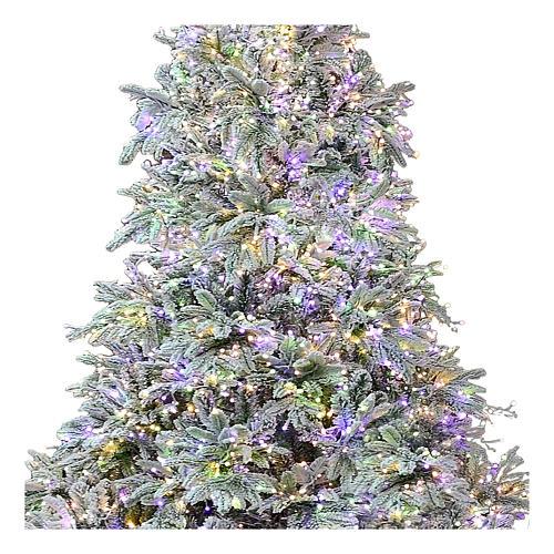 Árvore de Natal 225 cm 2900 LED 3 cores Andorra Frosted Poly 2