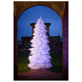 STOCK Winter Glamour Christmas tree 340 cm 1200 red LEDs outdoor s1