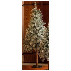 STOCK Albero di Natale 210 cm Aspen Pine floccato s1