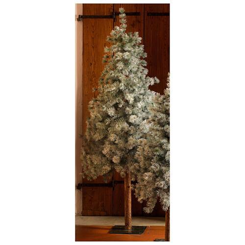 STOCK Albero di Natale 210 cm Aspen Pine floccato 1