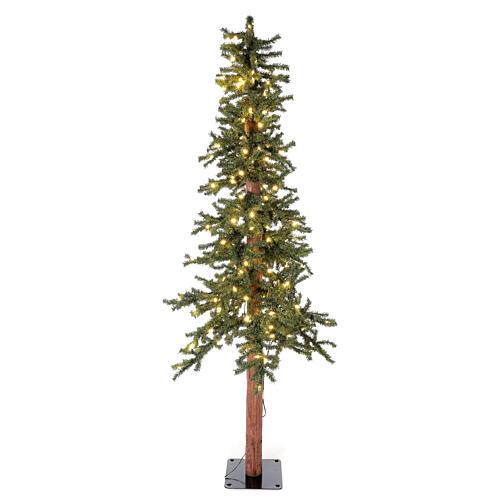 STOCK Sapin de Noël 210 cm Slim Forest 300 lumières LED blanc chaud extérieur 1