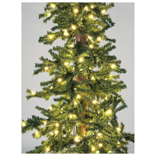 STOCK Albero Natale 210 cm abete Slim Forest 300 luci led caldi esterno 2