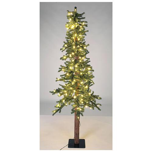 STOCK Sapin de Noël 300 cm Slim Forest 600 LEDs blanc chaud extérieur 3