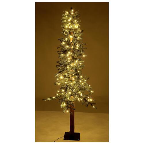 STOCK Sapin de Noël 300 cm Slim Forest 600 LEDs blanc chaud extérieur 4
