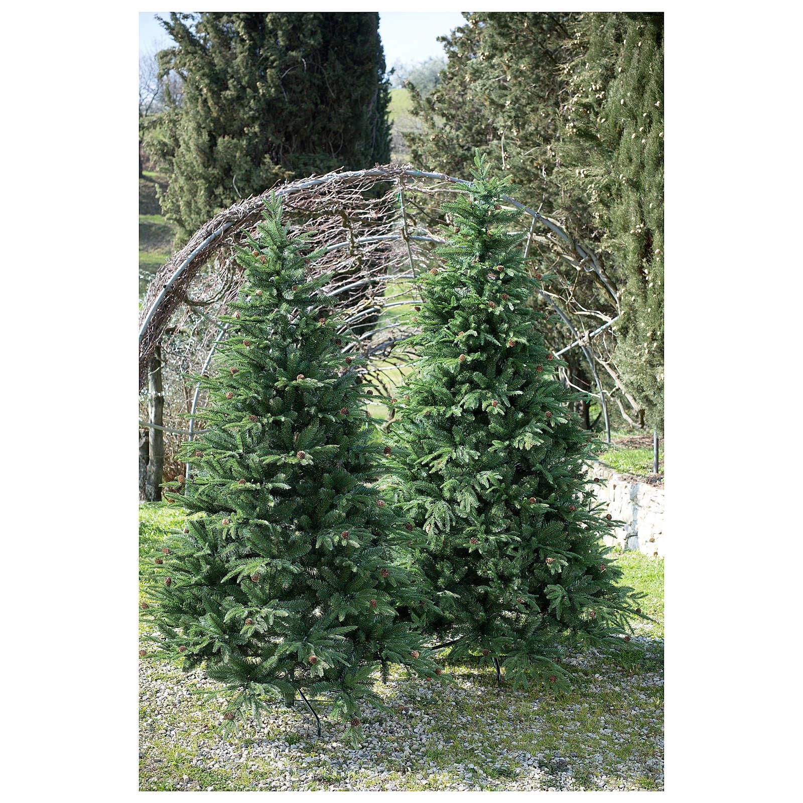 STOCK Árbol de Navidad 240 cm Austrian Fir con piñas para exterior 3