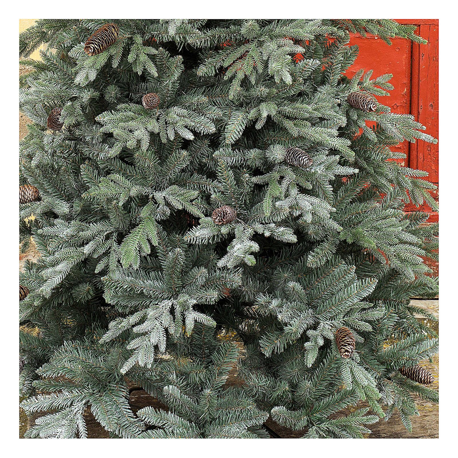 STOCK Albero di Natale 240 cm pigne Colorado Blue pigne per esterno 3