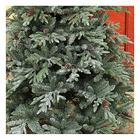 STOCK Albero di Natale 240 cm pigne Colorado Blue pigne per esterno s2