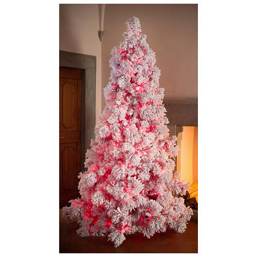 STOCK Albero di Natale 340 cm innevato Red Velvet 1050 led 1