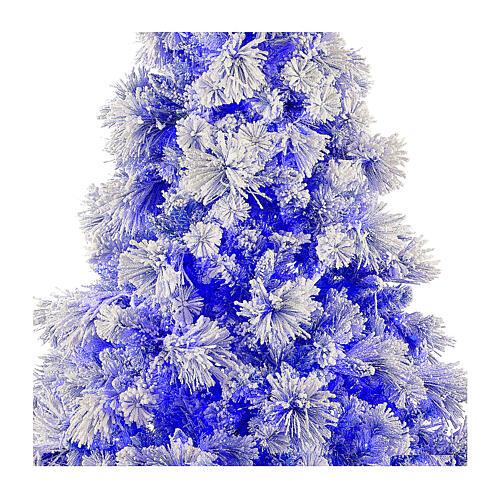 STOCK Snowy Virginia Blue Christmas tree 200 cm 250 LED indoor 2