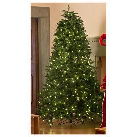 STOCK Albero Natale verde Hunter Green 340 cm con 1700 led caldi s1