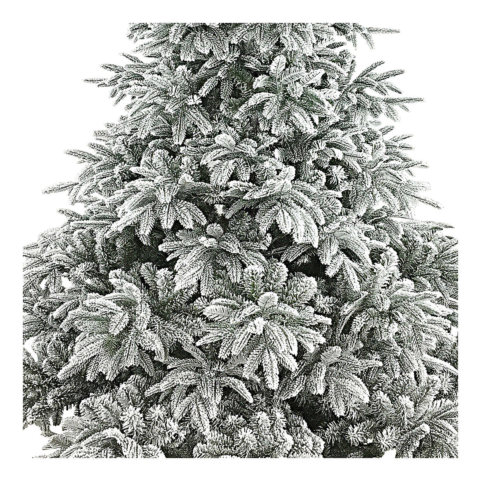 Poly Andorra Frosted Christmas Tree 210 cm 3