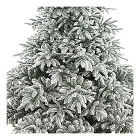 Poly Andorra Frosted Christmas Tree 210 cm s2