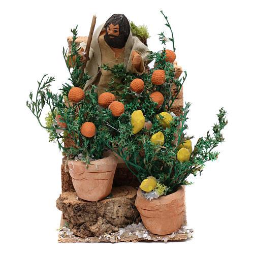 Giardiniere con arance e limoni movimento per presepe 10 cm 1