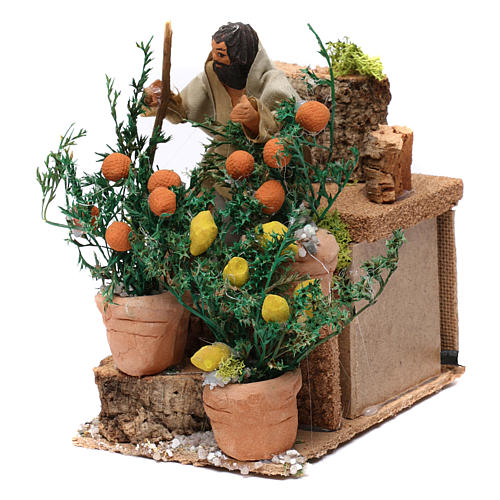 Giardiniere con arance e limoni movimento per presepe 10 cm 2