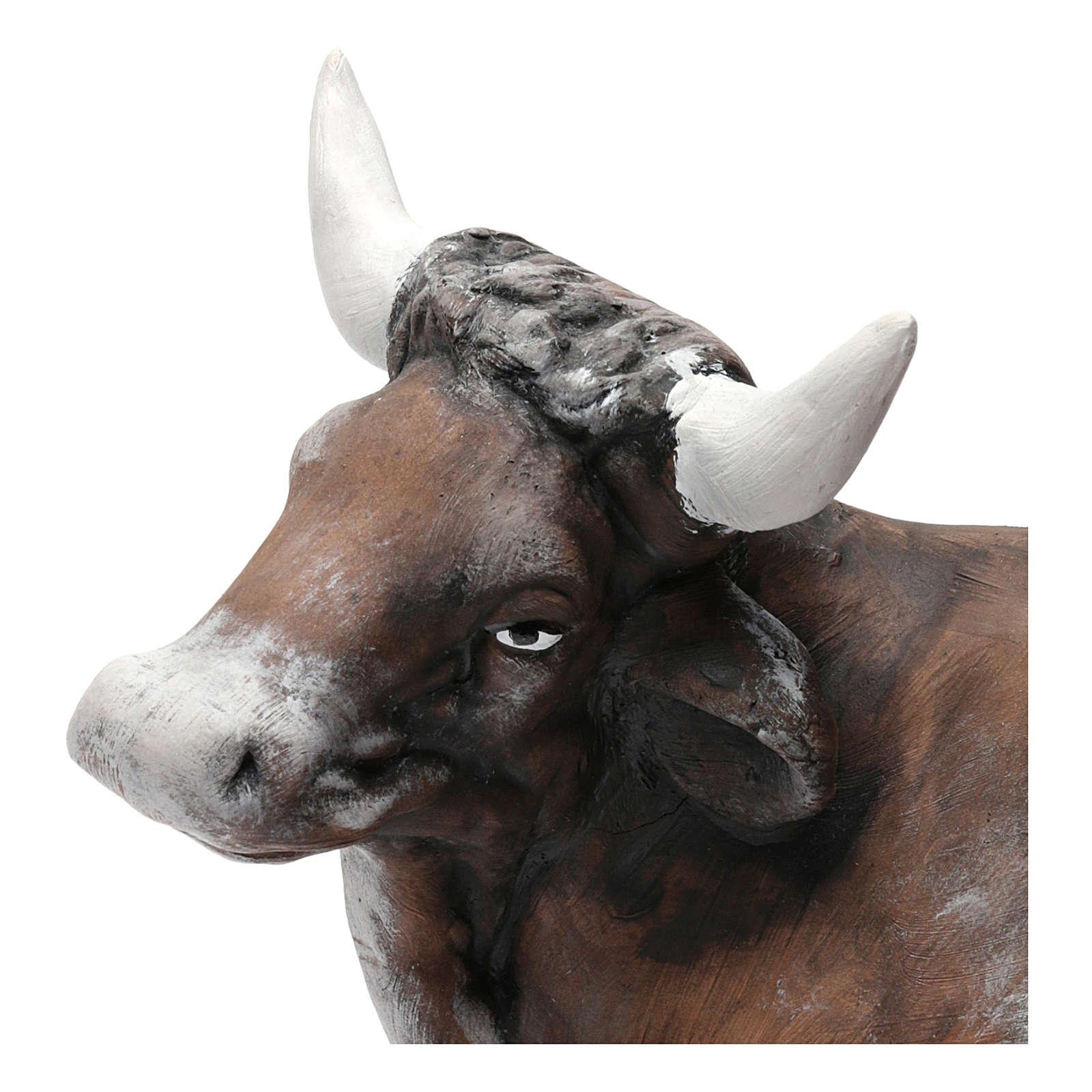 Ox in Terracotta for Neapolitan nativity style 700 of 30 cm 4