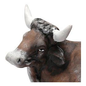 Ox in Terracotta for Neapolitan nativity style 700 of 30 cm s3