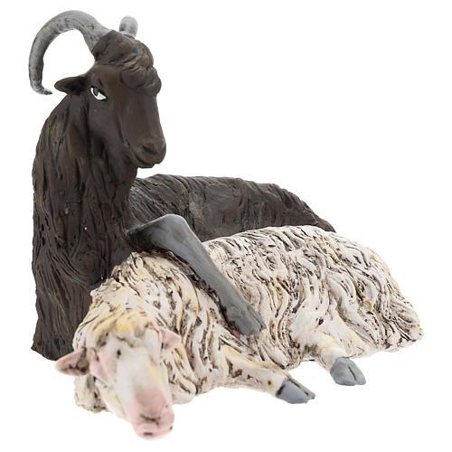Pareja macho cabrío y oveja para belén Nápoles estilo 700 de 35 cm de altura media 2