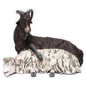 Coppia caprone e pecora per presepe Napoli stile 700 di 35 cm s1
