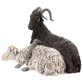 Coppia caprone e pecora per presepe Napoli stile 700 di 35 cm s3