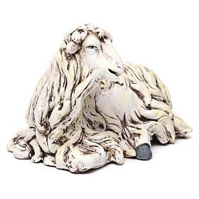 Pecorella rivolta a sinistra in terracotta per presepe Napoli stile 700 di 35 cm s3